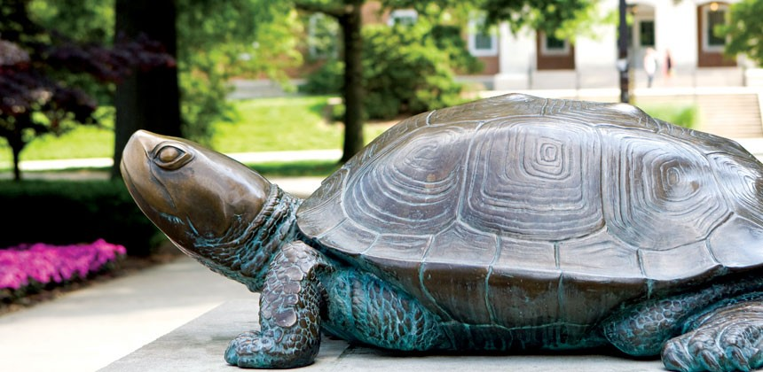 Testudo at MeKeldin Hall