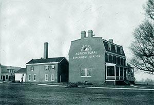 Historical photo of Rossborough